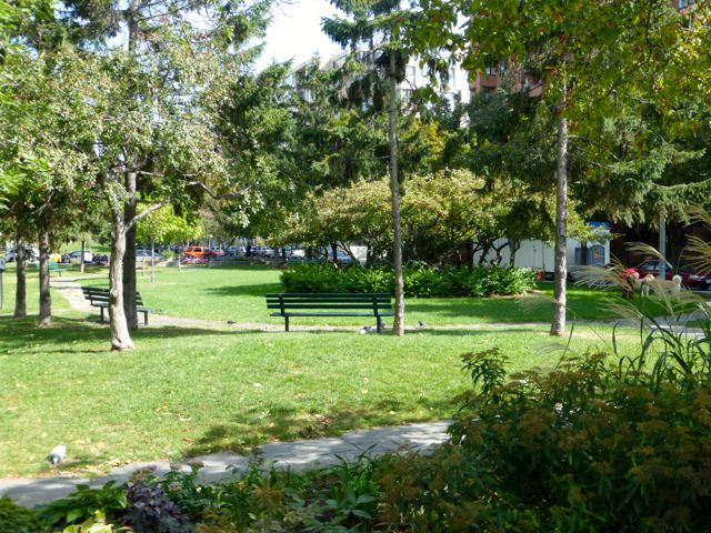 Park across from mid-rise housing